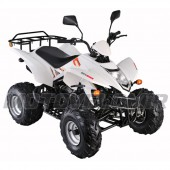 Квадроцикл STINGER-150